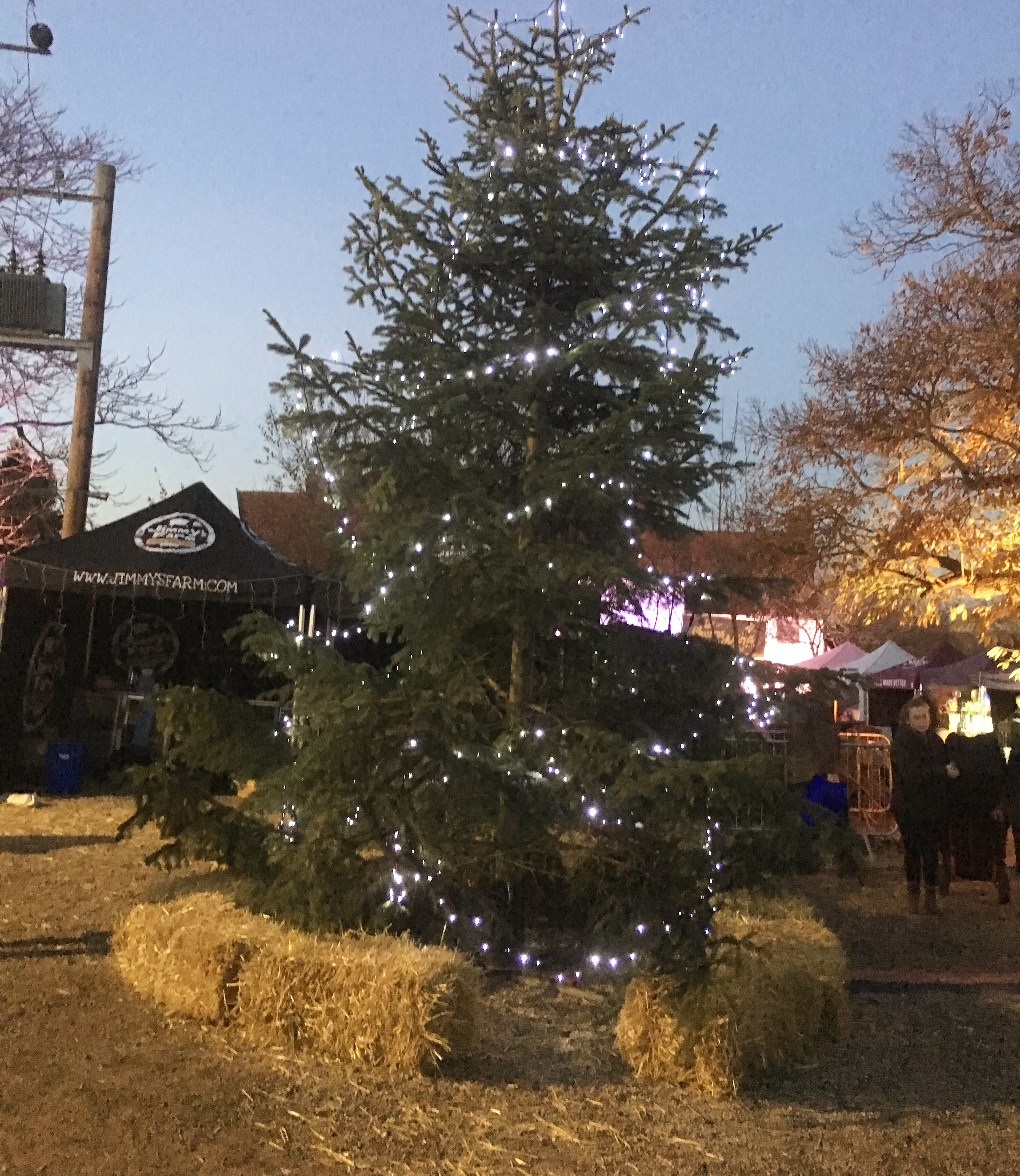 Jimmy's Farm Christmas Fayre